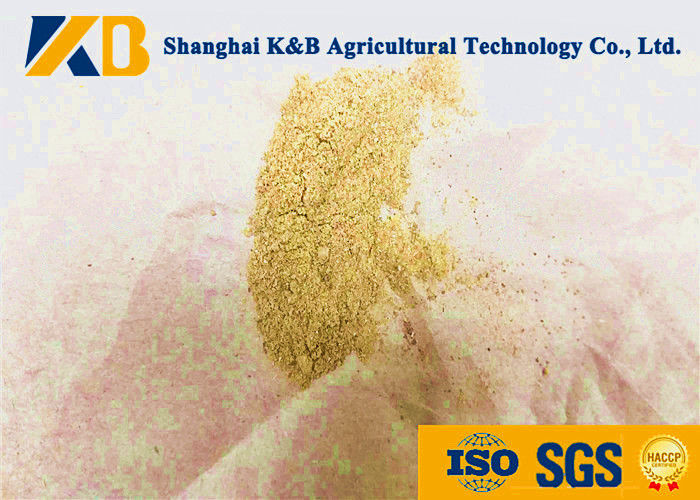 Safe Dried Fresh Sea Fish Powder Fertilizer Can Increase Animal Antibody